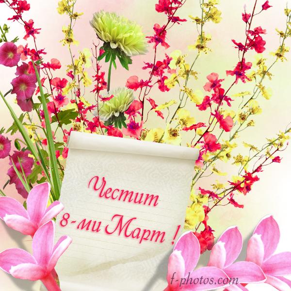 Нежни цветя за 8-ми март