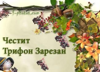 Честито на лозарите и градинарите - Трифон Зарезан