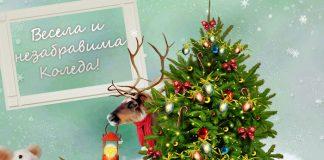 Коледно пожелание с Дядо Коледа