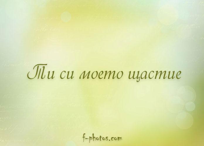 Ти си моето щастие
